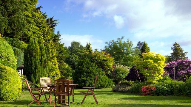 Domicilis intervient dans l'entretien de votre jardin